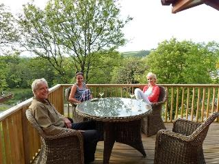 Beautiful 2 bedroom Lodge in Narberth - Narberth vacation rentals