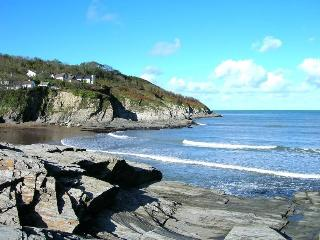 Cozy Bungalow with Washing Machine and Television - Aberporth vacation rentals