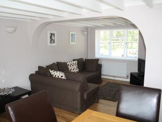 Annex at Kernow - New Forest vacation rentals