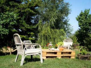 Sunny 4 bedroom Farmhouse Barn in Asti - Asti vacation rentals