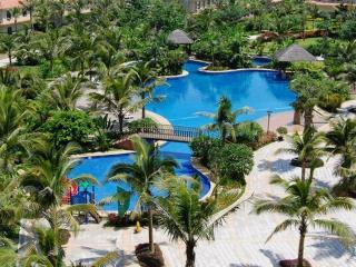Tropical island seaview BOAO - Sanya vacation rentals