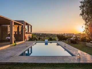 Beautiful Villa with Internet Access and Dishwasher - Sfakaki vacation rentals