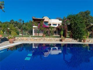 Perfect 5 bedroom Ortakent Villa with Internet Access - Ortakent vacation rentals