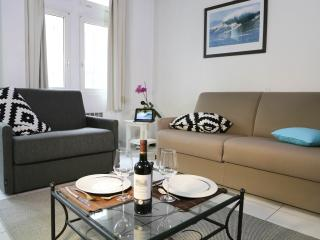 Jaulerry Biarritz - Biarritz vacation rentals