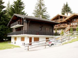 Nice Ski chalet with Internet Access and Television - Verbier vacation rentals