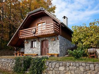 Vineyard cottage - Zidanica Rataj - Novo Mesto vacation rentals