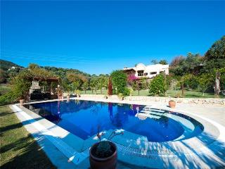Perfect Villa with Internet Access and A/C - Ortakent vacation rentals