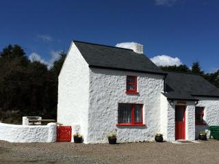 Cobblers Cottage Creggan. Cosy, quaint & welcoming - Omagh vacation rentals