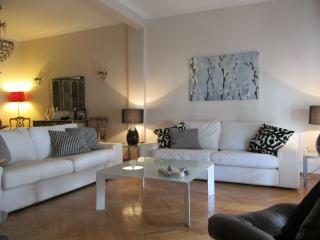 Merkuri Apartment next Hilton, Location, Free Tra - Athens vacation rentals