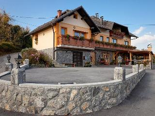 Vineyard cottage - Zidanica Skrbina - Smarjeske Toplice vacation rentals