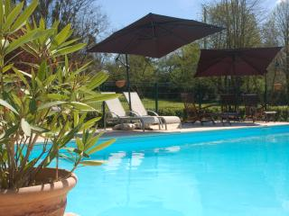 Perfect 3 bedroom Gite in Brion - Brion vacation rentals