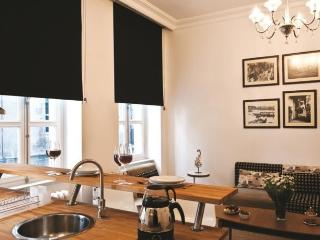 Deluxe 1-BR Apt. at Galata - Istanbul vacation rentals