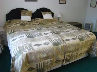 Lovely 2 bedroom Condo in Selkirk with Internet Access - Selkirk vacation rentals