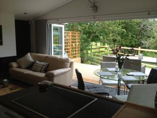 Nice Cabin with Deck and Internet Access - New Forest vacation rentals