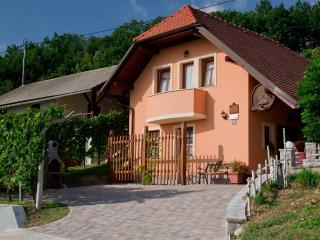 Vineyard cottage - Zidanica Tramte - Skocjan vacation rentals