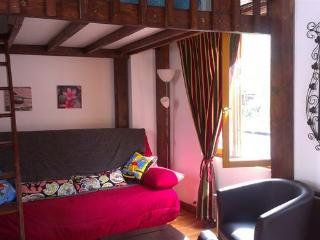 studio de charme cœur de Paris - Paris vacation rentals