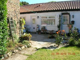 Nice Cottage with Television and Central Heating - Seaton vacation rentals