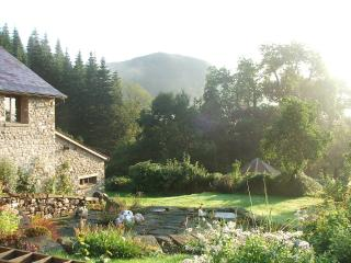 Nant yr Onnen Barn - Llandovery vacation rentals