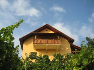 Vineyard cottage - Zidanica Ucman - Otocec vacation rentals