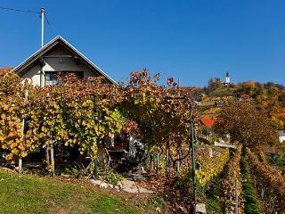 Vineyard cottage - Zidanica Vercek - Novo Mesto vacation rentals