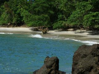 Jungle Creek Alma Pacifica,Gated,A/C,King bed - Manuel Antonio National Park vacation rentals