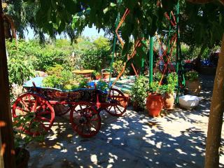 Lodge with garden ,close to the beach Faliraki - Faliraki vacation rentals