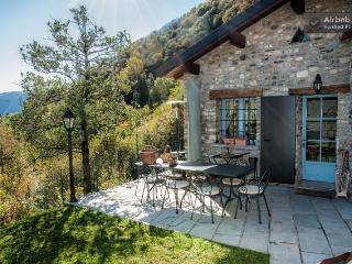 Il Pungi Topo - Cadegliano Viconago vacation rentals
