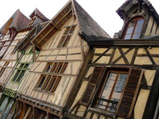 1 bedroom Gite with Internet Access in Troyes - Troyes vacation rentals