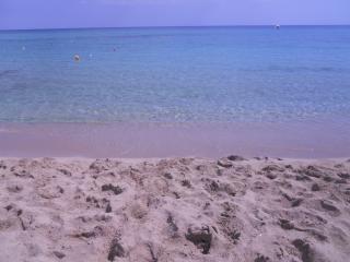 LA CASA DI CARLOTTA CONCHIGLIA - Campomarino vacation rentals