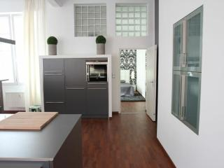 2 bedroom Condo with Internet Access in Offenbach - Offenbach vacation rentals