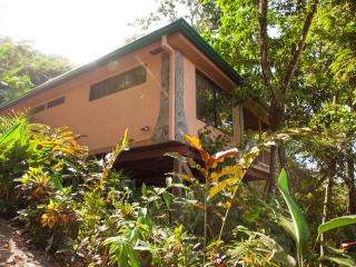 Casa Macaw, Rain Forest Gem! Walk To Town - Manuel Antonio National Park vacation rentals