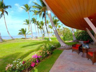 Seashell Villa - Lahaina vacation rentals