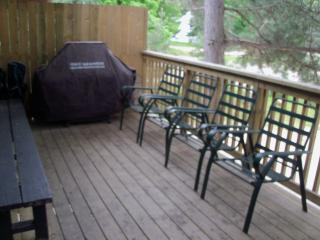 Nice Craigleith Chalet rental with Deck - Craigleith vacation rentals