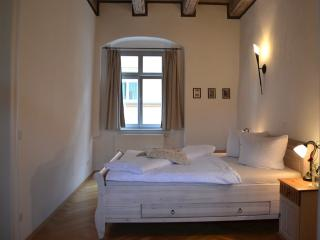 LLAG Luxury Vacation Apartment in Pirna - 1033 sqft, high-quality furnishing, historic (# 2486) - Geising vacation rentals