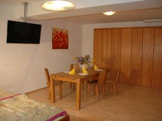 SOUTERRAIN ROOMS WITH BATH 750 sqft - Munich vacation rentals