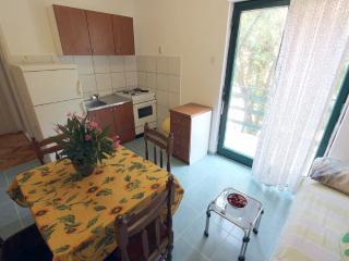 Nice apartment near sea - Petrcane vacation rentals
