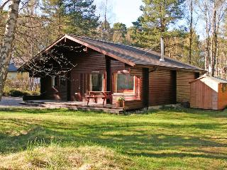 Nice Lodge with Internet Access and Satellite Or Cable TV - Carrbridge vacation rentals
