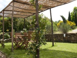 Nice Farmhouse Barn with Internet Access and Satellite Or Cable TV - San Polo in Chianti vacation rentals