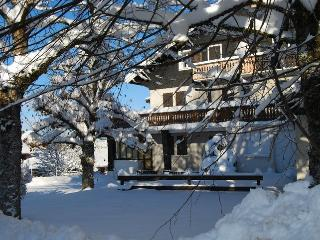 3 bedroom Apartment with Internet Access in Les Carroz-d'Araches - Les Carroz-d'Araches vacation rentals