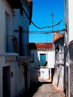 Sunny Condo with Internet Access and Linens Provided - Alhama de Granada vacation rentals
