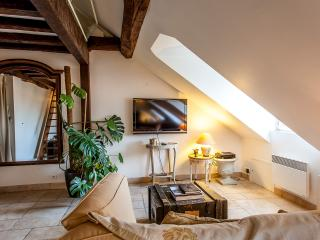 Romantic Condo with Internet Access and Short Breaks Allowed - Paris vacation rentals