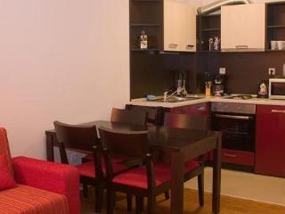 1 bed Apartments in Bansko - Bansko vacation rentals