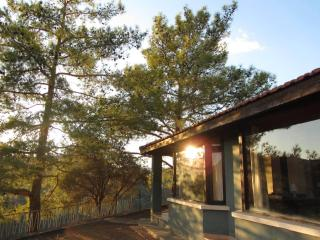Quiet natural hilltop setting, panoramic views - Gerasa vacation rentals