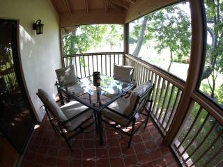 Perfect Villa with Internet Access and Dishwasher - Palm Beach vacation rentals