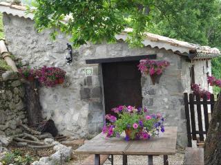 Baita Chalet nel sannio provincia di Benevento - Faicchio vacation rentals