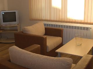 One bedroom apartment in Bansko - Bansko vacation rentals