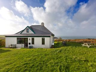 Perfect Cottage with Internet Access and Outdoor Dining Area - Saint Davids vacation rentals