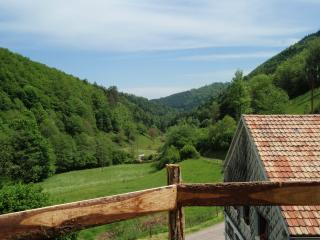 Cozy 2 bedroom Rombach-le-Franc Gite with Balcony - Rombach-le-Franc vacation rentals