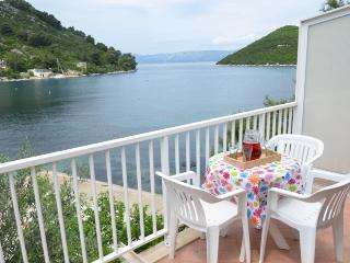 1 bedroom Apartment with A/C in Mljet - Mljet vacation rentals