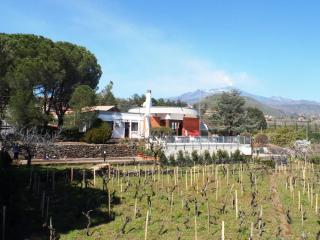 VILLAETNA Beautiful Villa with Pool wonderfully situated on slopes Etna Volcano! - Taormina vacation rentals
